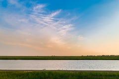 Vatten, gräsplanfält och fåglar royaltyfria bilder