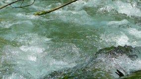 Vatten i en snabb bergström arkivfilmer