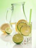Vatten i exponeringsglaset med iskuber Fotografering för Bildbyråer