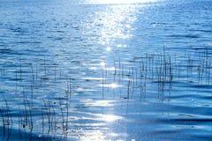 Vatten i sjön royaltyfria foton