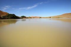 Vatten i Sossusvlei Fotografering för Bildbyråer