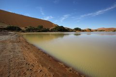 Vatten i Sossusvlei Arkivbilder