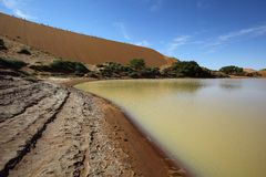 Vatten i Sossusvlei Royaltyfria Bilder