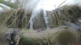 Vatten i vårliten vik lager videofilmer