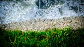 Vatten, jord och gräs closeup av en klippa Royaltyfri Bild