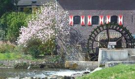 Vatten maler, Brueggen, lägre Rhen, Tyskland Royaltyfri Bild
