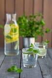 Vatten med limefrukt och mintkaramellen i exponeringsglas royaltyfri fotografi