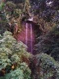 Vatten Natur dusch royaltyfri fotografi