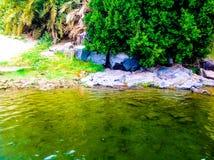 Vatten och gräsplanlandskap Arkivbild