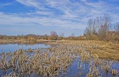 Vatten och himmel Fotografering för Bildbyråer