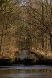 Vatten och mest forrest inom den holländska Waterloopen Forrest för hydraulisk forskning Royaltyfria Bilder