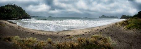 Vatten på en strand i Nya Zeeland Royaltyfri Foto