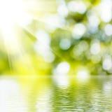 Vatten på grön suddig bakgrund Arkivfoto