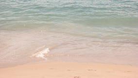 Vatten på kust stock video