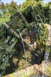 Vatten rullar in Provence, Frankrike royaltyfri bild