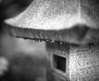Vatten små droppar, regn, svartvit konst som är oskarp royaltyfria foton