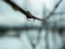 Vatten som dryper av ett staket Arkivfoton