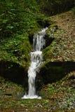 Vatten som faller till och med skogen Royaltyfri Fotografi