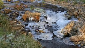 Vatten som flödar ner en stenig iskall liten vik lager videofilmer