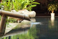 Vatten som ner faller från bamburöret Arkivbild