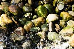 Vatten som plaskar på Moss Covered River Rocks Royaltyfri Fotografi
