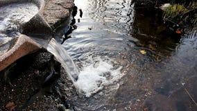 Vatten som spiller in i dammet från springbrunndanande, bubblar stock video