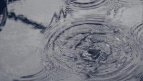 Vatten tappar på dagen av inverkan på den lilla pölen lager videofilmer