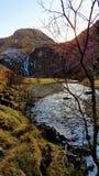 Vatten till och med vildmarken Arkivfoton