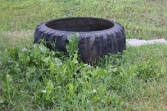 Vattenbehållare från bilgummihjul 30737 Royaltyfri Bild