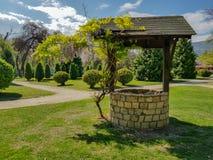 Vattenbrunnen med det lilla trädet som växer bredvid den i stad, parkerar arkivfoton