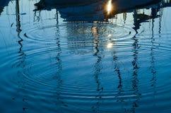 Vattencirklar från banhoppningfisk Royaltyfri Fotografi