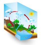 Vattencirkulering. natur. Vektordiagram Arkivfoton