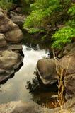 Vattendrag från Khao-Yai Fotografering för Bildbyråer