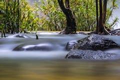 Vattendrag och sten Fotografering för Bildbyråer