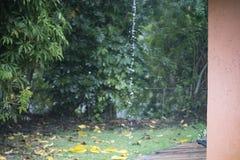 Vattendroppande efter regn Arkivfoton