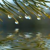 Vattendroppar Arkivfoto