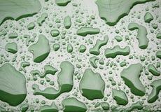 Vattendroppar i Green Fotografering för Bildbyråer