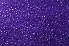 Vattendroppar på den purpurfärgade bakgrunden royaltyfria foton
