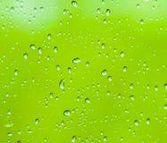 Vattendroppar på en grön bakgrund Arkivfoton