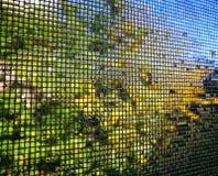 Vattendroppar på myggnät royaltyfria foton