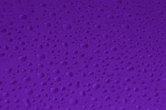 Vattendroppar på violett färgbakgrundstextur Fotografering för Bildbyråer