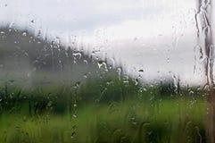 Vattendroppe på ett fönster royaltyfria foton