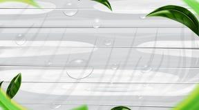 Vattendroppe på vit för trägolvfärg och sidor, trätexturbakgrund royaltyfri illustrationer