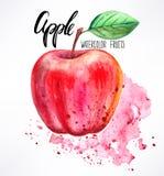 Vattenfärg Apple Royaltyfri Foto