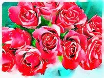 Vattenfärg av en bukett av röda rosor Fotografering för Bildbyråer