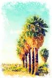 Vattenfärg av palmträd på en strand royaltyfri illustrationer
