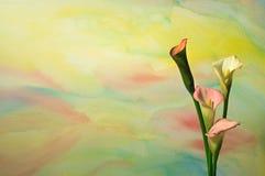 vattenfärg för 3 callaliljar Royaltyfri Bild