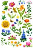 Vattenfärg för blommaträdgård Royaltyfria Bilder
