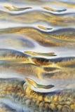 Vattenfärg för sandsäng Royaltyfri Foto