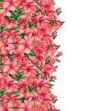 Vattenfärg hand-målat blom- baner i tropisk stil Arkivbild